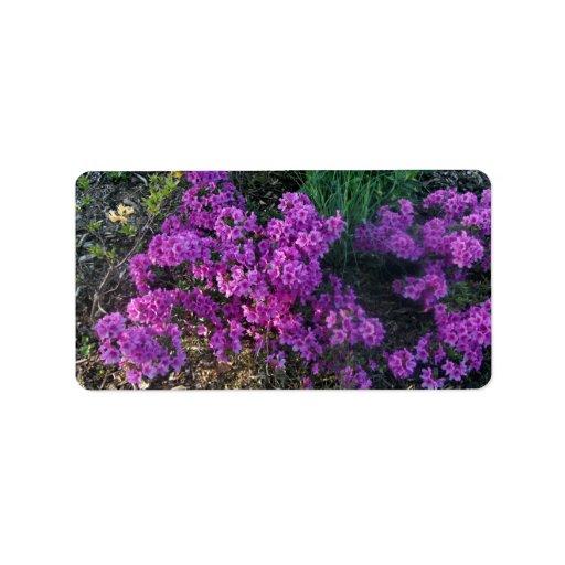 Pequeñas flores de color rosa oscuro etiquetas de dirección
