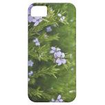 Pequeñas flores iPhone 5 Case-Mate coberturas