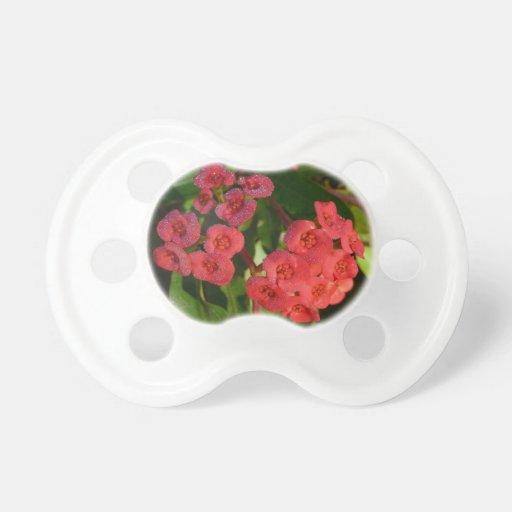 pequeñas flores rojas con la imagen del rocío chupete de bebe