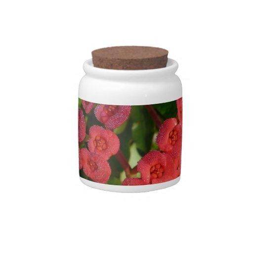 pequeñas flores rojas con la imagen del rocío jarras para caramelos