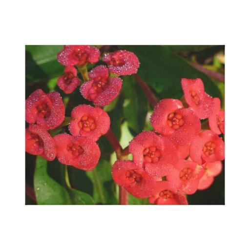 pequeñas flores rojas con la imagen del rocío impresión en lienzo estirada