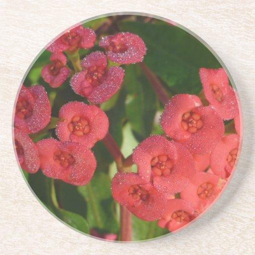 pequeñas flores rojas con la imagen del rocío posavaso para bebida
