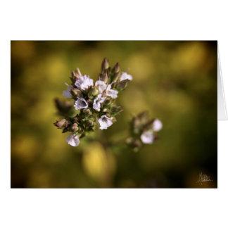 Pequeñas flores [tarjeta de felicitación]