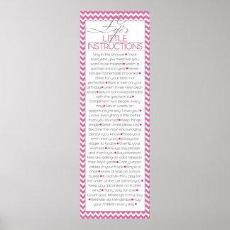 Pequeñas instrucciones de Lifes (rosa) Póster