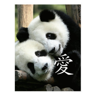 Pequeñas pandas gigantes cariñosas chinas tarjeta postal