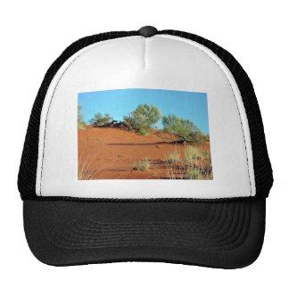 Pequeñas plantas en dunas de arena rojas gorros bordados