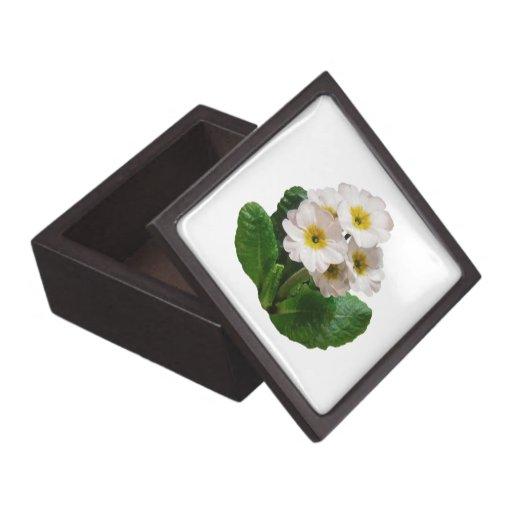 Pequeñas primaveras blancas caja de regalo de calidad