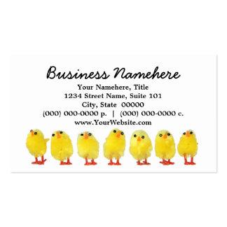 Pequeñas tarjetas de visita de los polluelos