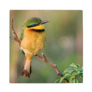 Pequeño Abeja-Comedor que se encarama en una rama, Posavasos De Madera