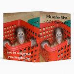 Pequeño Alfred - orangután del bebé