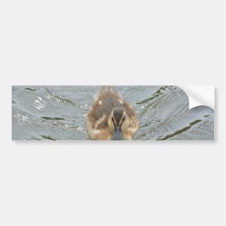 pequeño anadón etiqueta de parachoque
