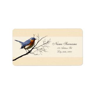 Pequeño azul del pájaro etiquetas de dirección