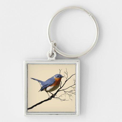 Pequeño azul del pájaro, llaveros