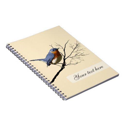 Pequeño azul del pájaro, notebook