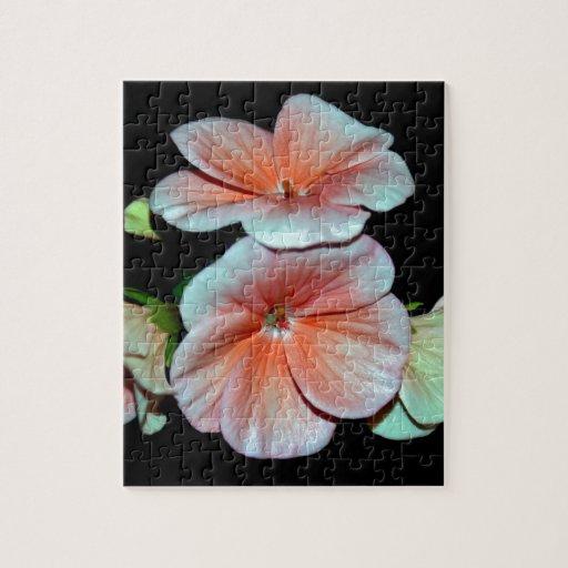 Pequeño Begonia.jpg rosado hermoso Rompecabeza Con Fotos
