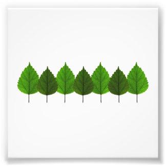 Pequeño bosque verde feliz de la hoja del árbol fotografía