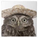 Pequeño búho que lleva un gorra de paja - noctua d azulejo cuadrado grande