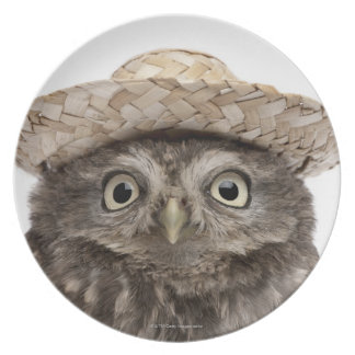 Pequeño búho que lleva un gorra de paja - noctua d platos