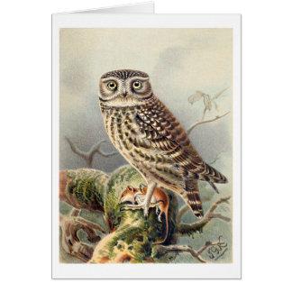 Pequeño búho tarjeta de felicitación