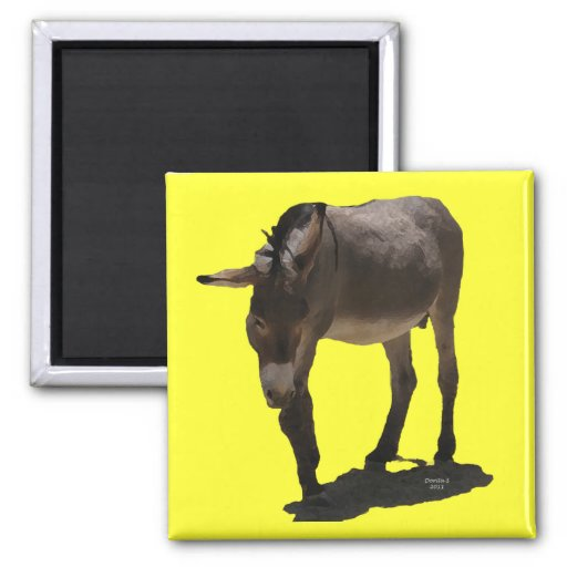 Pequeño Burro dulce - burro Imán De Frigorífico