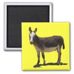 Pequeño Burro lindo - burro Imán De Frigorifico