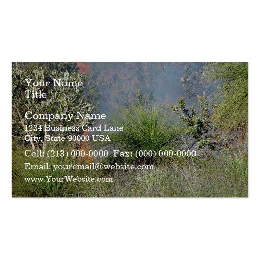 Pequeño bushfire tarjeta de visita