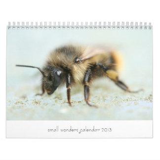 Pequeño calendario 2013 de las maravillas