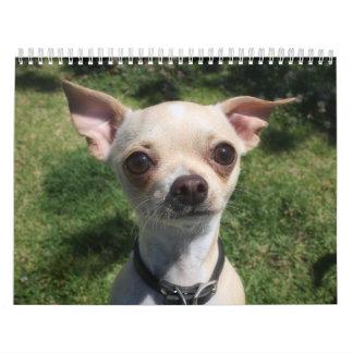 Pequeño calendario del parque del perro