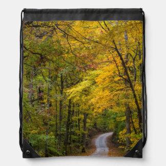 Pequeño camino de la grava alineado con color del mochilas