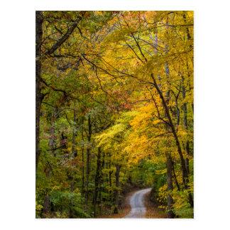 Pequeño camino de la grava alineado con color del tarjetas postales