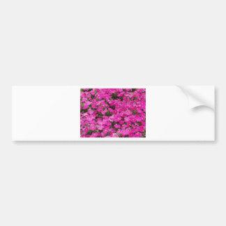 Pequeño campo de flores rosadas oscuras pegatina de parachoque