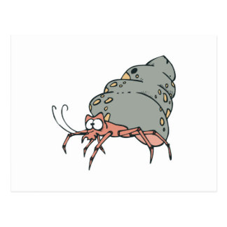pequeño cangrejo de ermitaño lindo tarjeta postal
