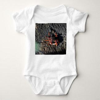 pequeño cangrejo rojo en la naturaleza animal de body para bebé