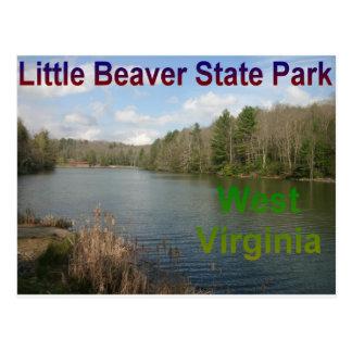 Pequeño castor Virginia Occidental Tarjeta Postal
