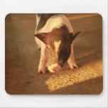 Pequeño cerdo lindo alfombrilla de raton