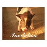 Pequeño cerdo lindo invitación 10,8 x 13,9 cm