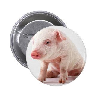 Pequeño cerdo pin redondo de 2 pulgadas