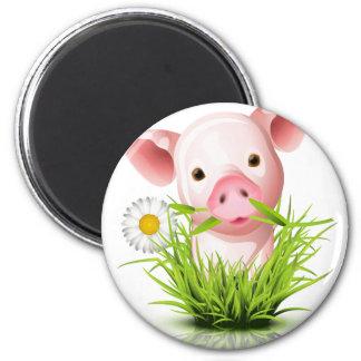 Pequeño cerdo rosado en hierba iman para frigorífico