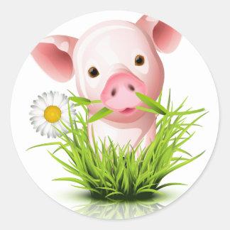 Pequeño cerdo rosado en hierba etiquetas redondas