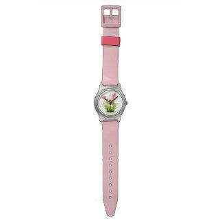 Pequeño cerdo rosado en hierba reloj