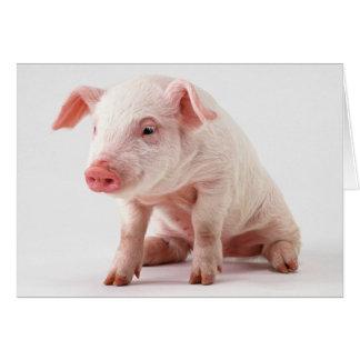 Pequeño cerdo tarjeta de felicitación