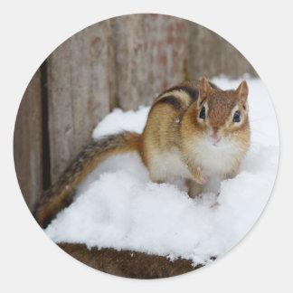 Pequeño Chipmunk lindo en la nieve Pegatina Redonda