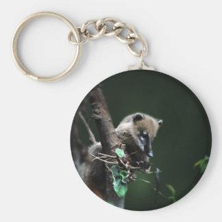 Pequeño coati de los bribones - lemur llavero redondo tipo pin