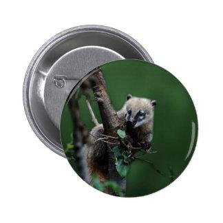 Pequeño coati de los bribones - lemur pin redondo 5 cm