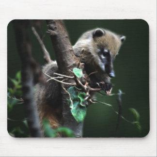 Pequeño coati de los bribones - lemur alfombrillas de ratón