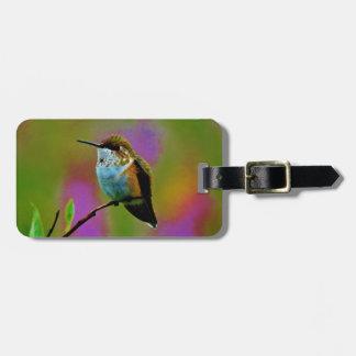 Pequeño colibrí gordo etiquetas bolsa
