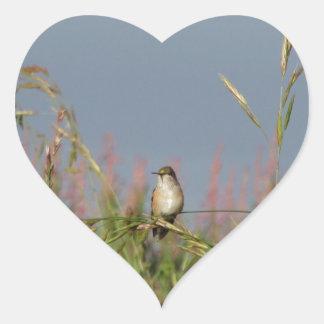 Pequeño colibrí gordo pegatina en forma de corazón