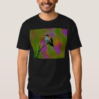 Pequeño colibrí gordo poleras