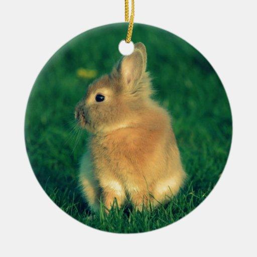 Pequeño conejo adorno navideño redondo de cerámica