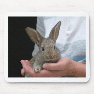 pequeño conejo dulce alfombrilla de ratón
